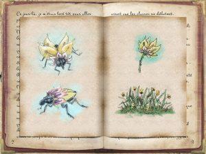 Une multitude de dessins sont répartis à l'intérieur comme à l'extérieur des carnets.